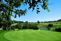 Scandinavian Cup on Benamor Golf Menu