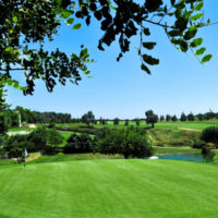 Scandinavian Cup on Benamor Golf Menu